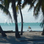 Road sign under plam trees at the beach in Key West Florida Stock Photo