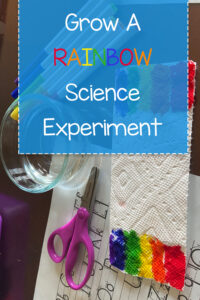 "Are you looking for a fun first grade science lesson to do with your kids? This ""Grow a Rainbow"" science activity is a great way to teach them about molecules, colors, rainbows, and how water grows ... all in one lesson. Additionally, it's a fun activity for any age to teach kids how to grow a rainbow and the colors of the rainbow. This is an easy activity that only requires a paper towel, water, and washable markers."